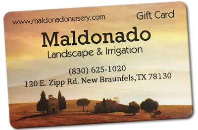 maldonado-gift-card